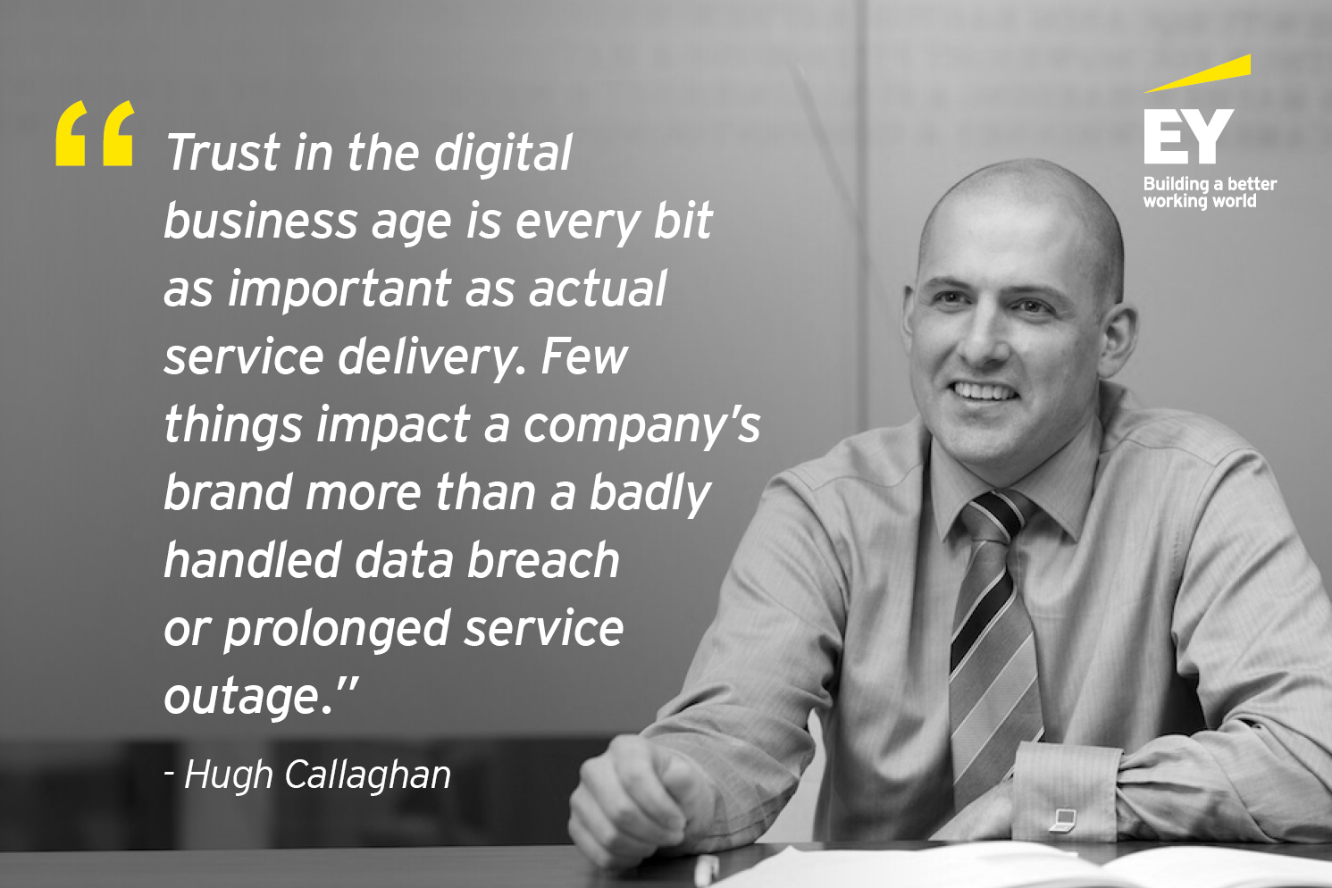 Cybersecurity quote from EY Cyber Risk Leader